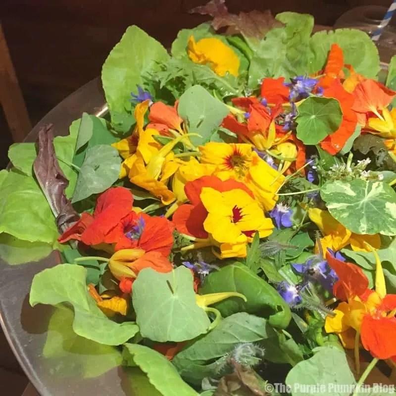 Nasturtiums Salad