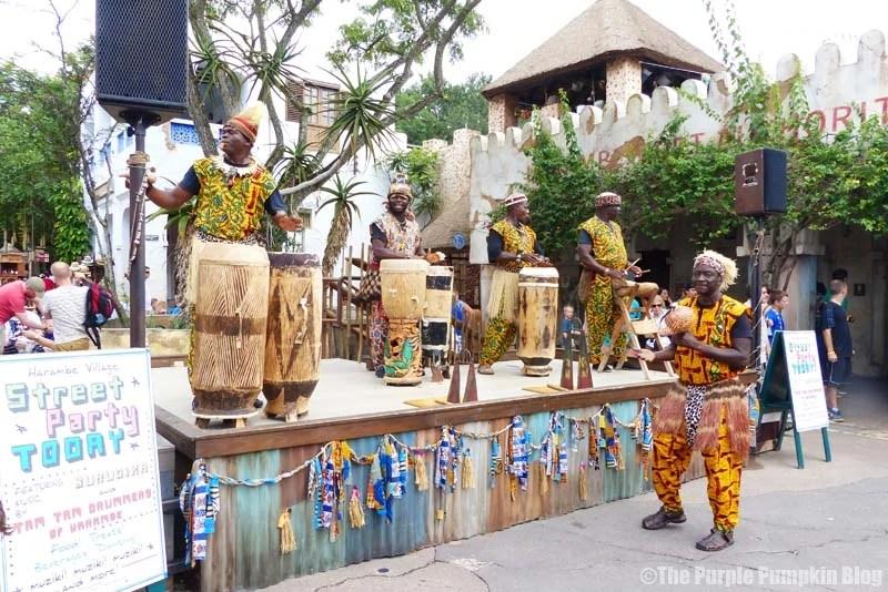 Tam Tam Drummers of Harambe - Animal Kingdom