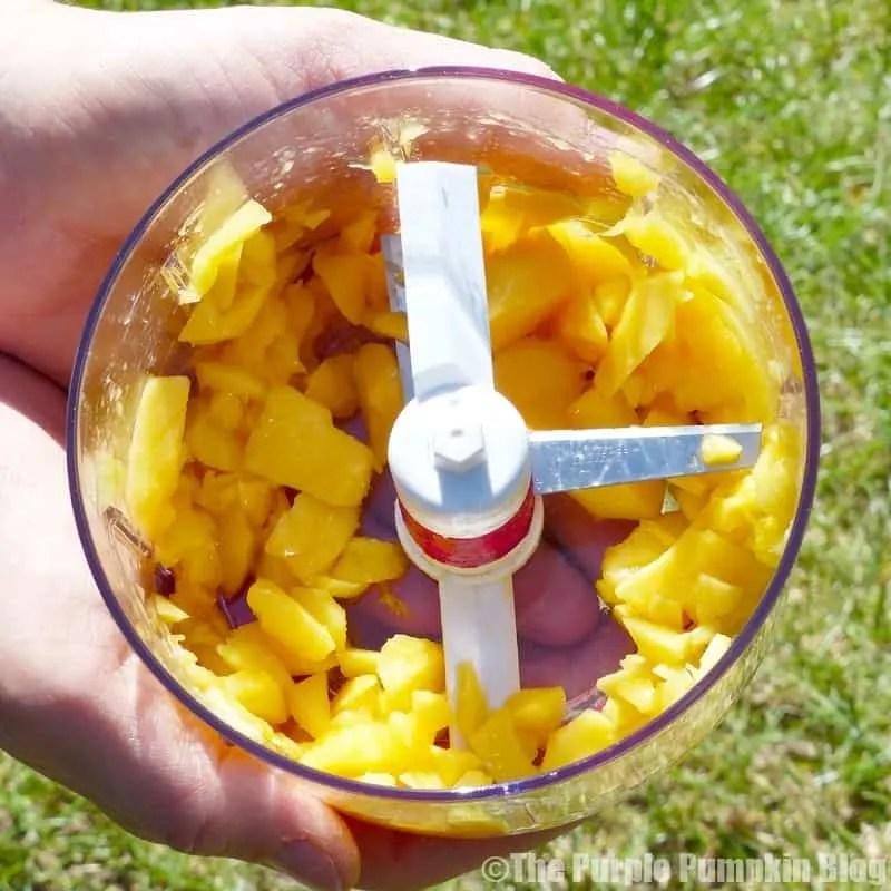 Tropical Fruit Salsa with Cinnamon Tortilla Chips - Mango