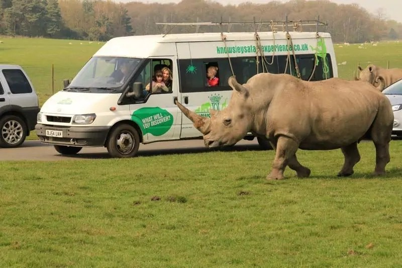 Knowsley Safari Park, Liverpool