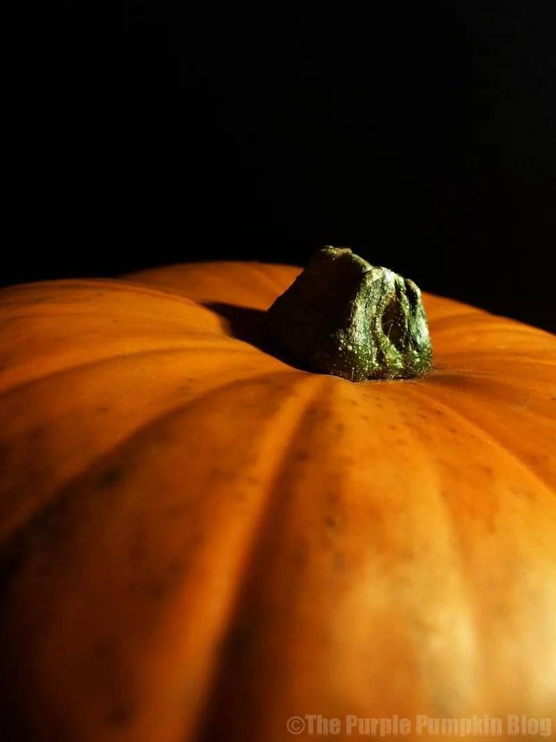 Reasons To Love Autumn - Pumpkins