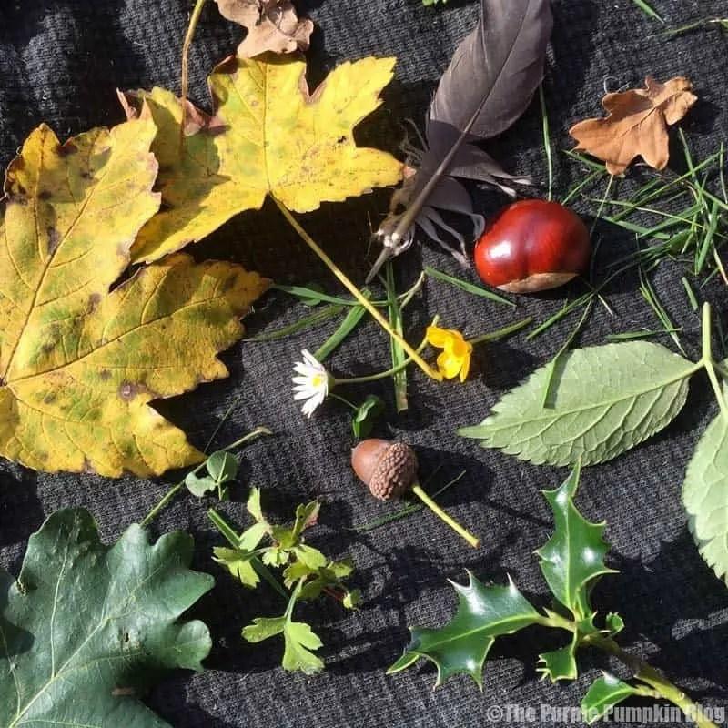 Reasons To Love Autumn