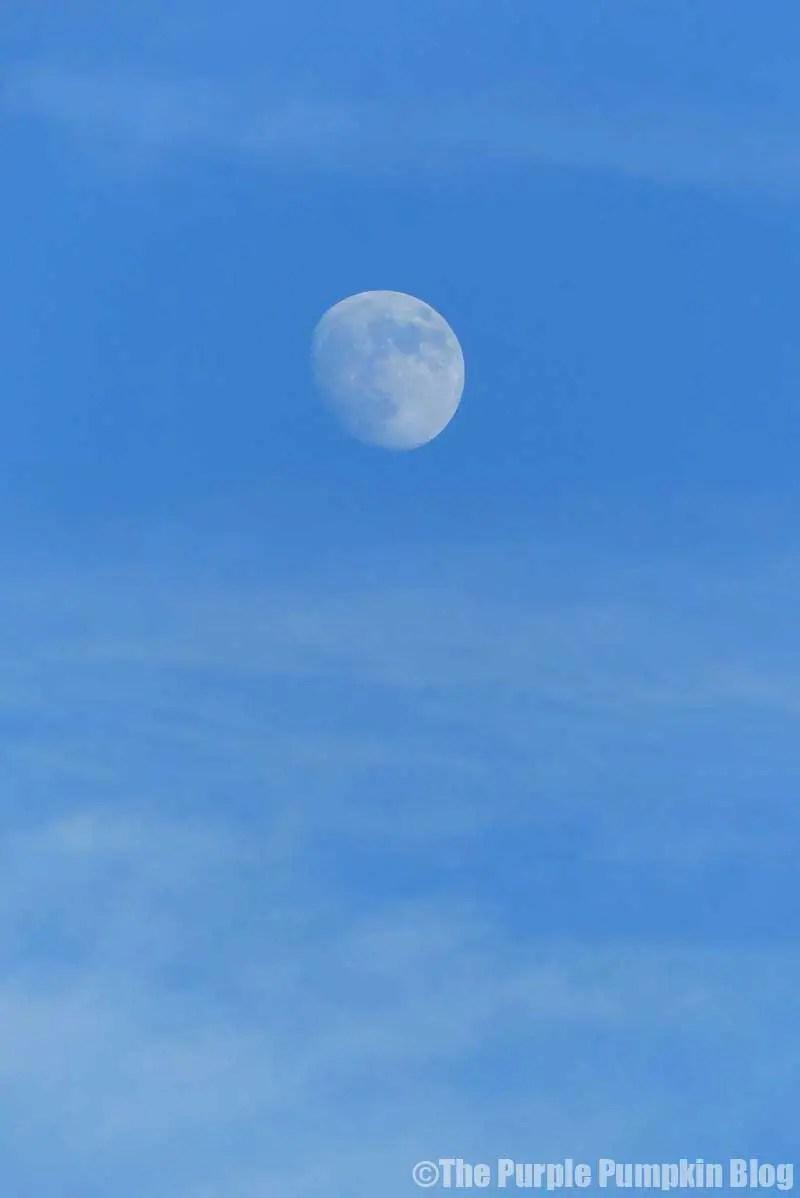 The Moon over Disney Art of Animation Resort