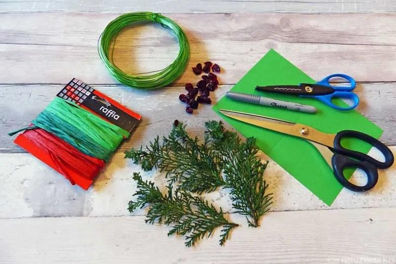 Fern & Dried Cranberry Wreath - Materials