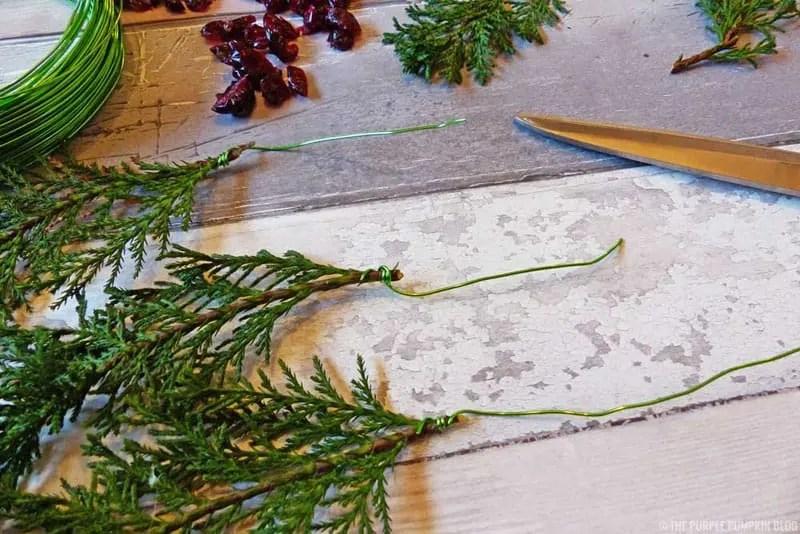 Fern & Dried Cranberry Wreath - Step 1