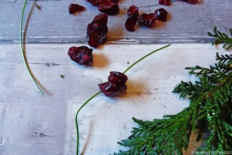 Fern & Dried Cranberry Wreath - Step 4
