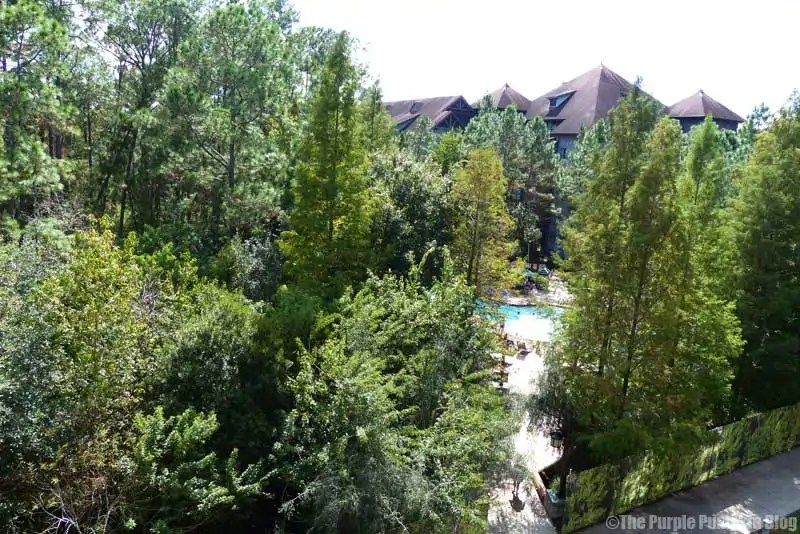 Wilderness Lodge Hotel Room - View