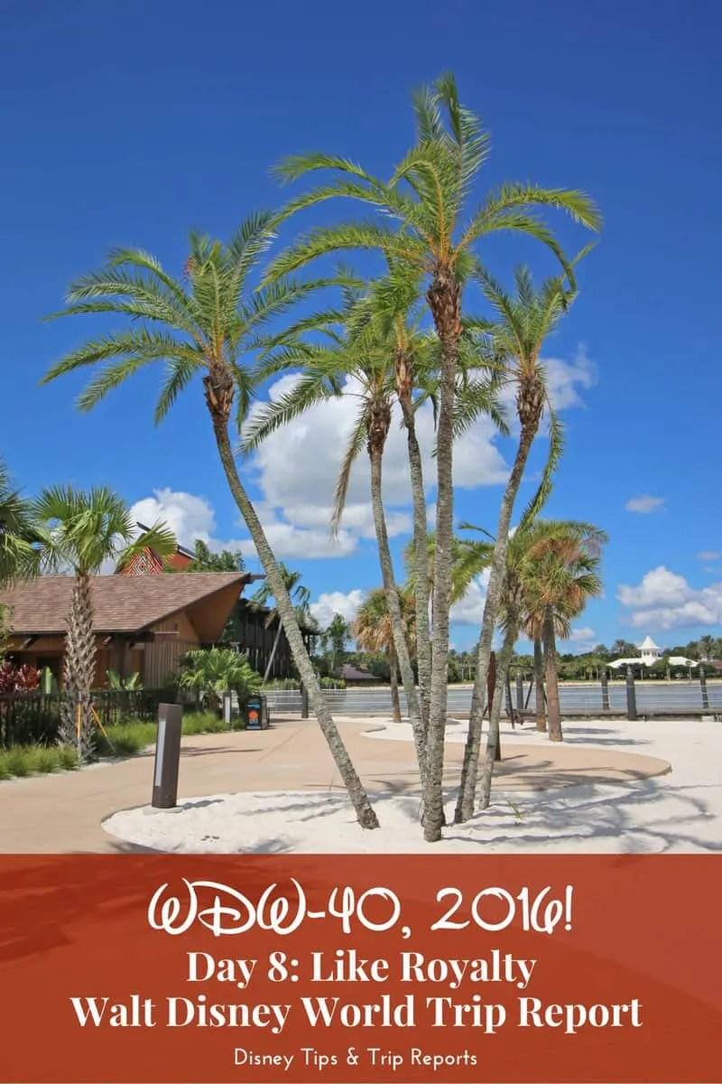 Disney Trip Reports, WDW-40 Disney Trip Report 2016