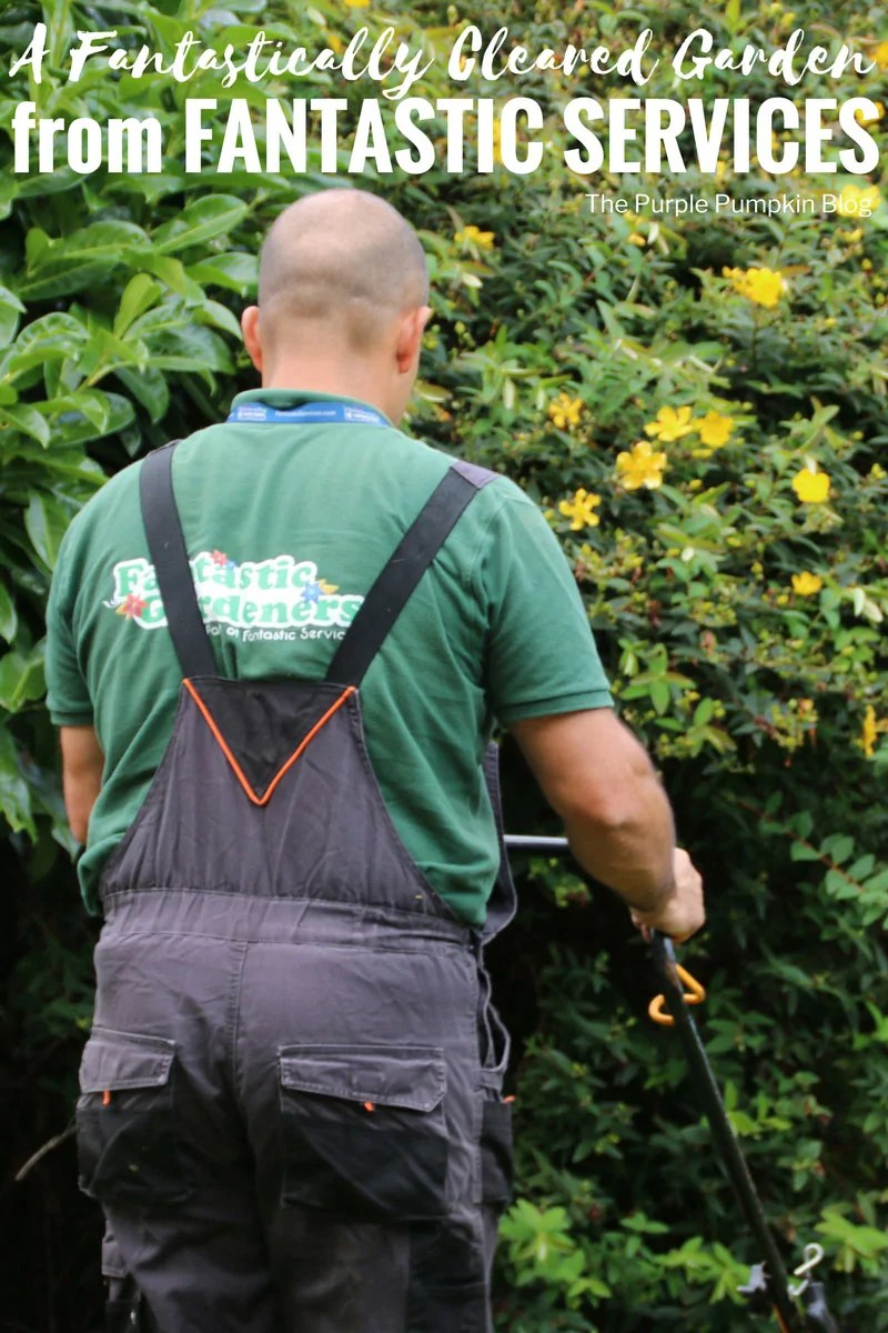 A Fantastically Cleared Garden from Fantastic Services! Fantastic Services are one of the leading domestic services providers in London, the South East and the North West of England. Garden Services include maintenance, clearance, lawn care, and more.
