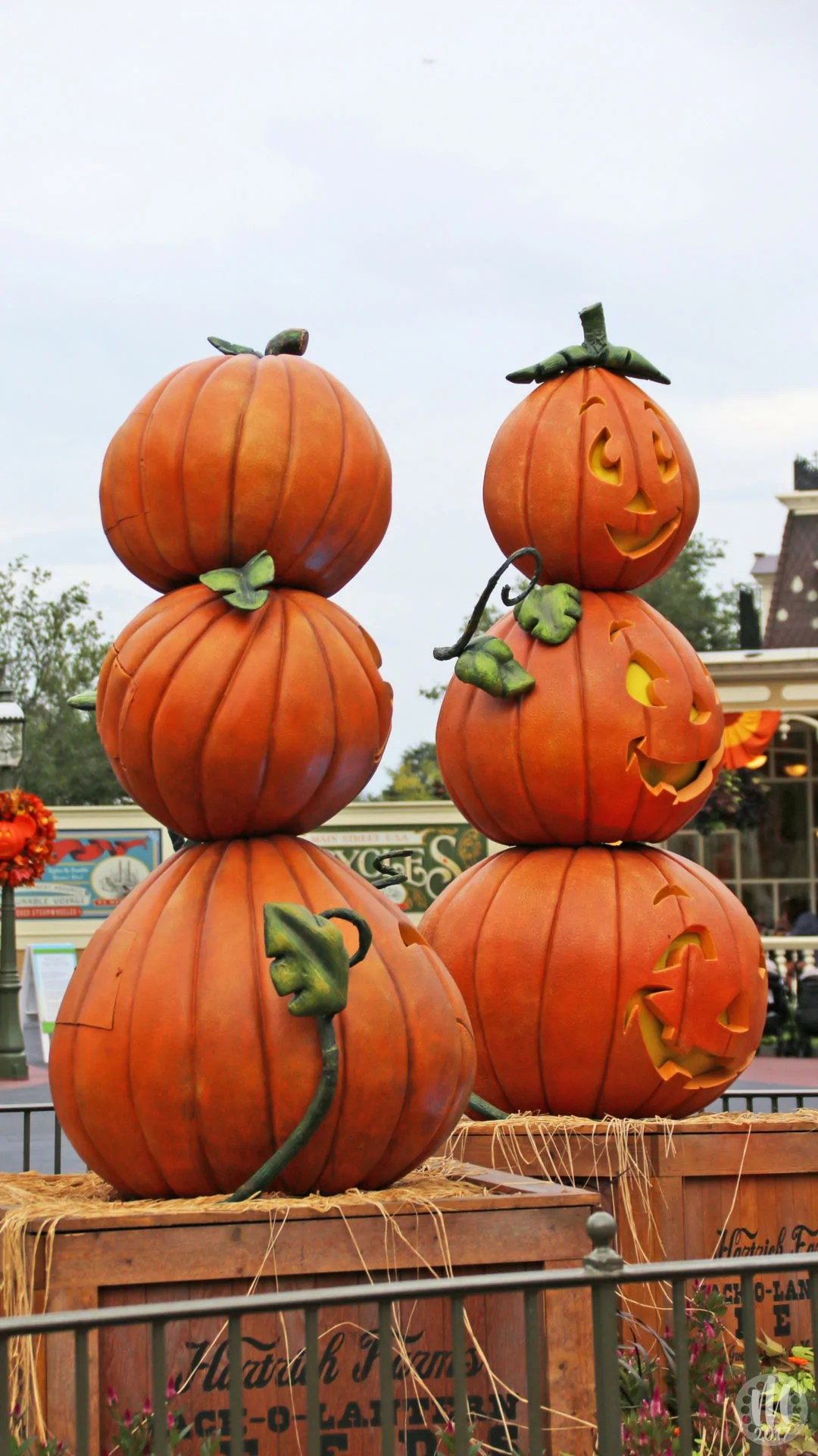 Disney Halloween Iphone Wallpapers From Magic Kingdom