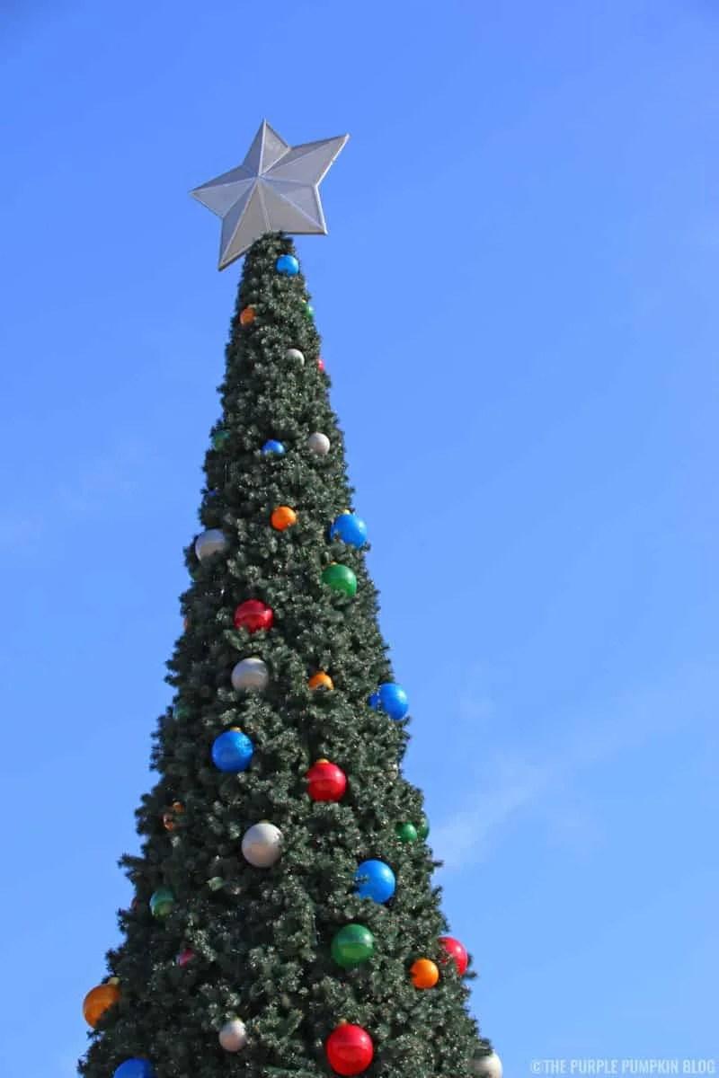 Disney's Contemporary Resort Christmas Tree (Outside)