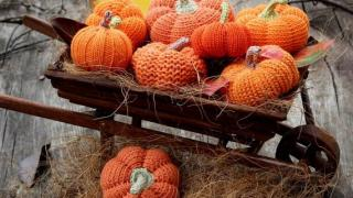 Amigurumi Pumpkin Patterns Set