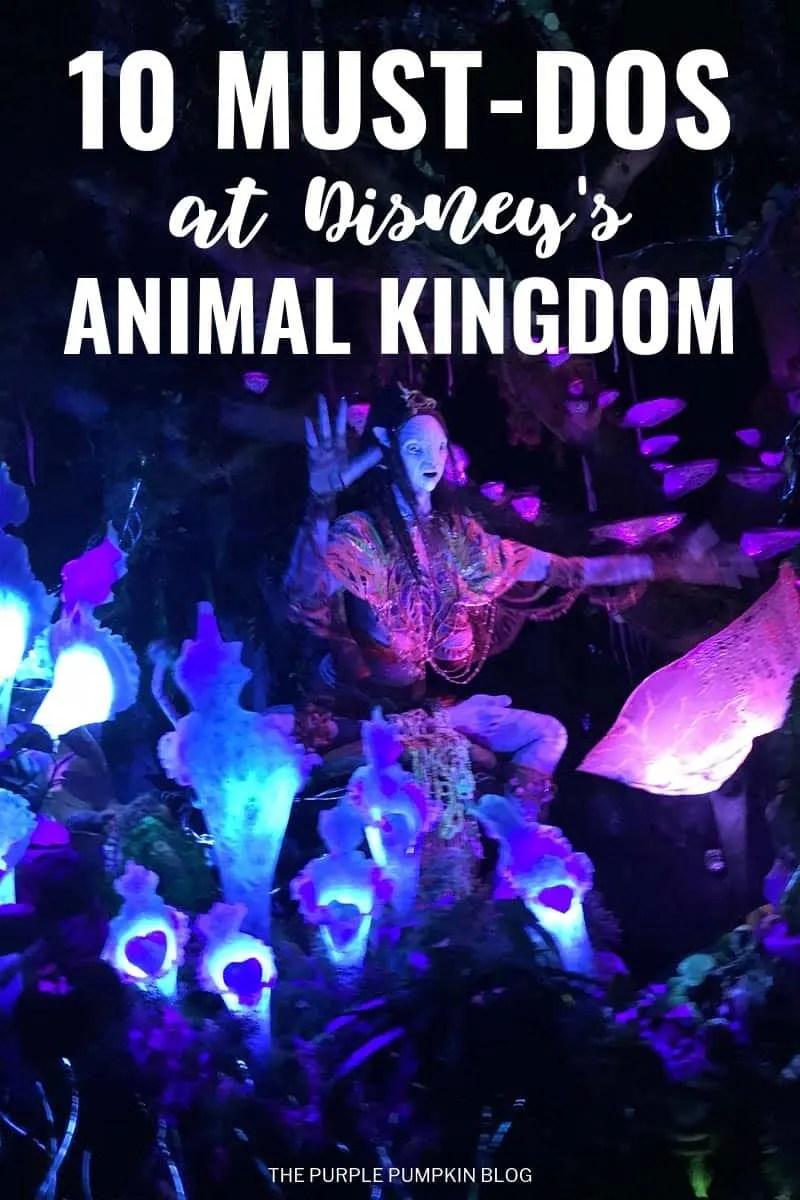10 Must-Dos at Disney's Animal Kingdom