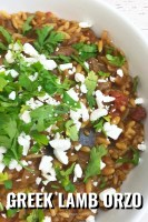 Greek Lamb Feta Orzo