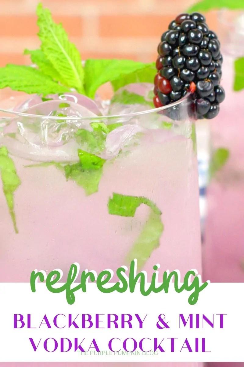 Refreshing Blackberry & Mint Vodka Cocktail