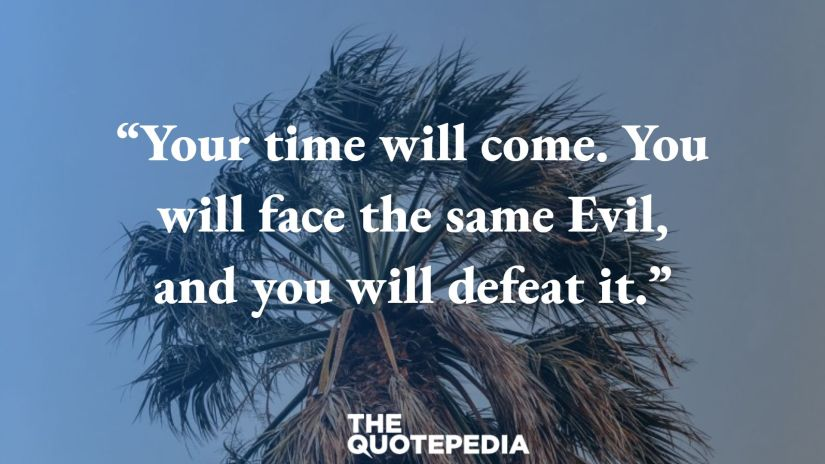 """""""Your time will come. You will face the same Evil, and you will defeat it."""""""