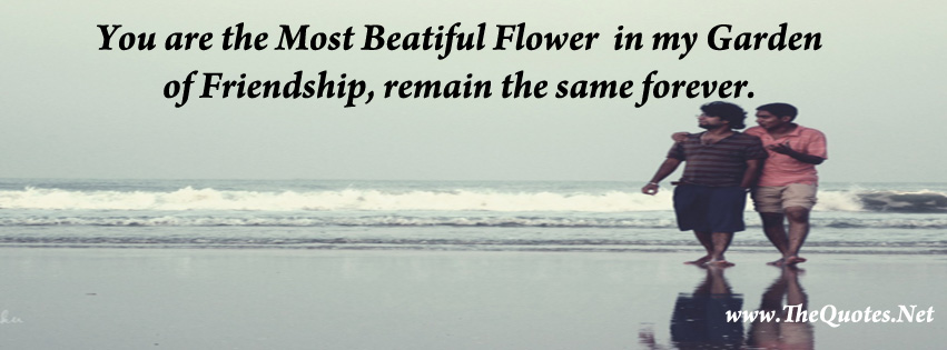 Facebook Cover Image Friendship Quotes Thequotes Net