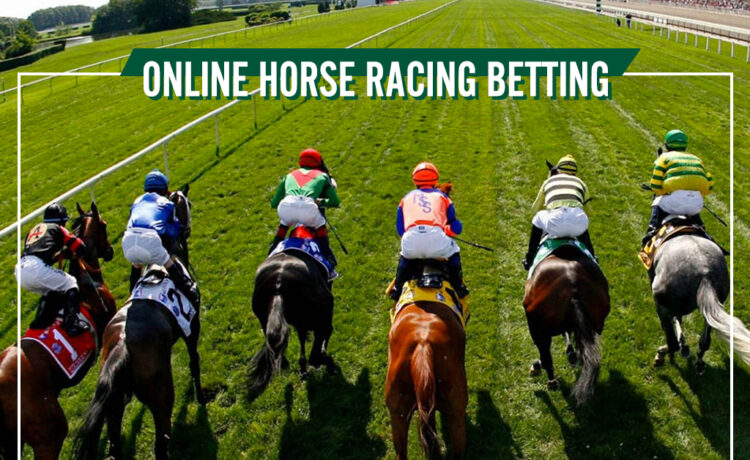 What are the different horse racing bets?