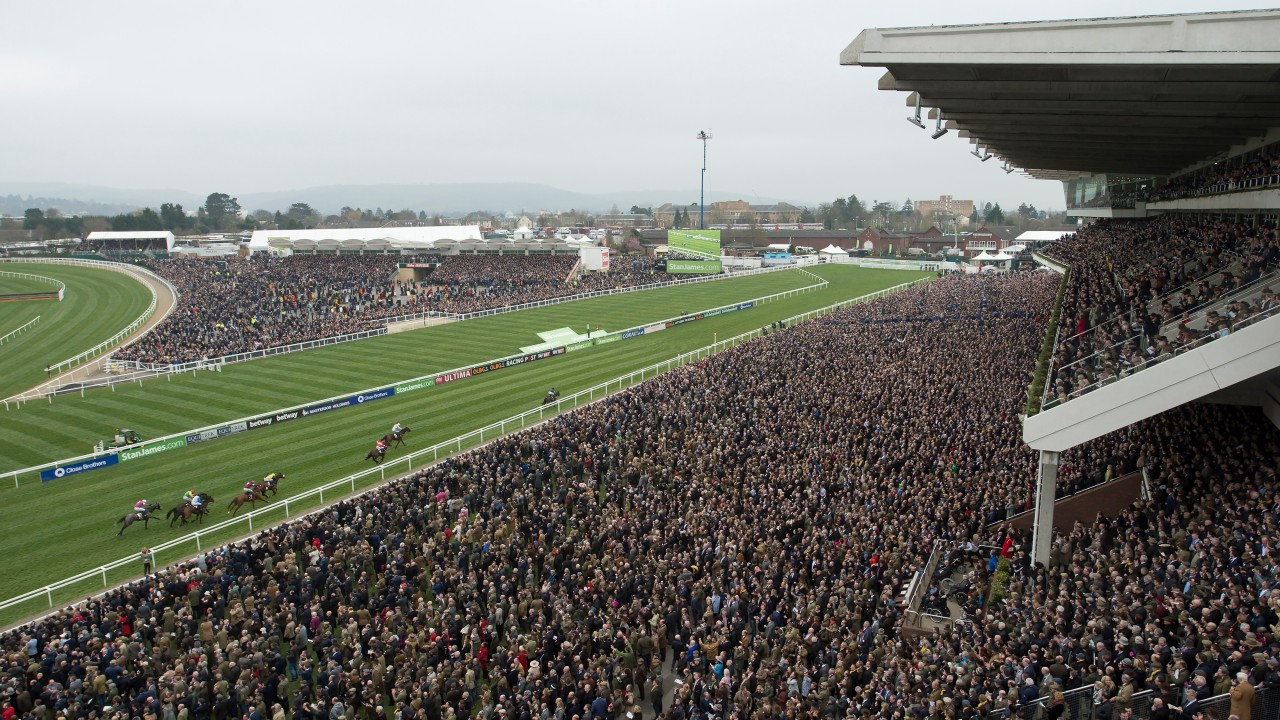 Racing tips: Names to look out for at Cheltenham