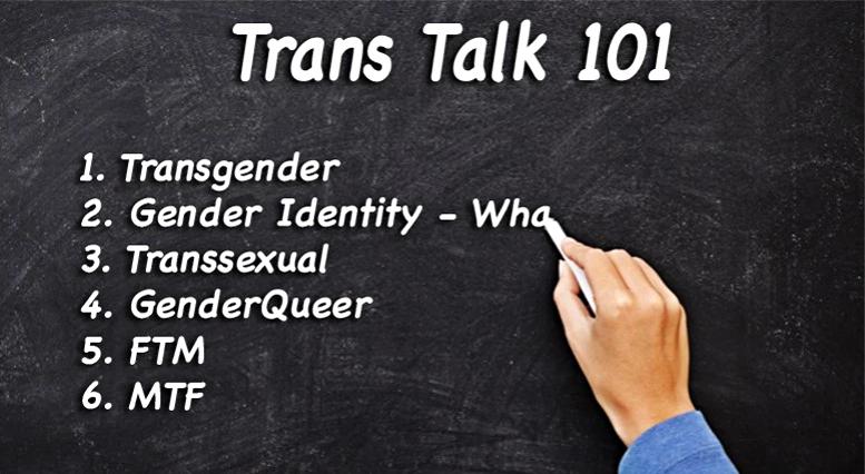 Transgender Defamatory Terms