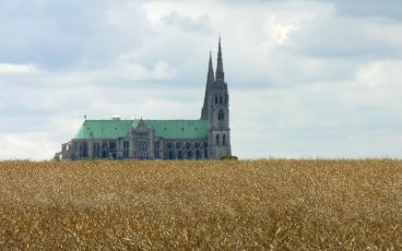 Chartres Cathedral and Wheat Field