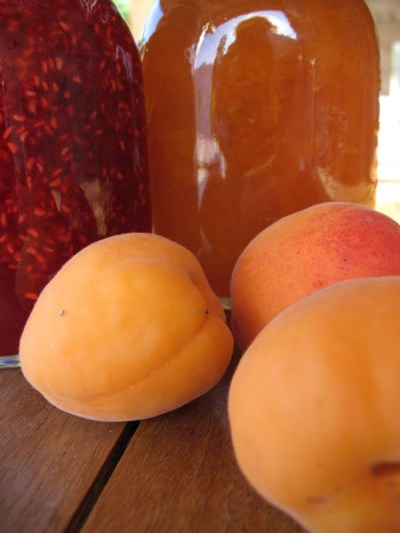 apricot_raspberry_jam_valais-switzerland_suisse_recipe_geneva