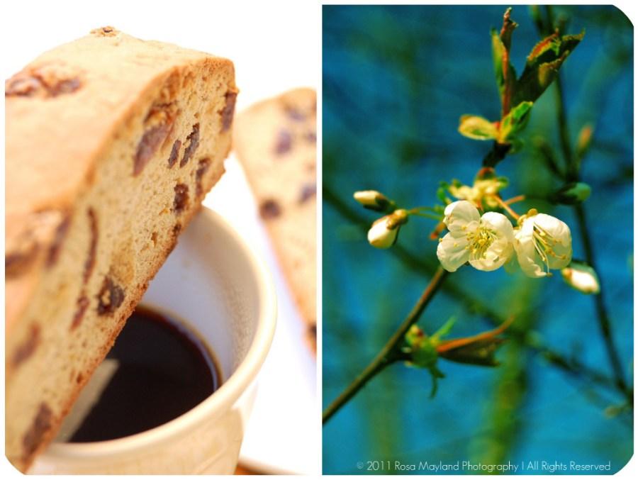 Biscotti Picnik collage 2 bis