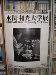 Minamata Disease Poster