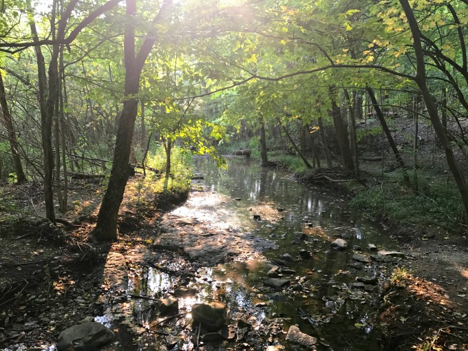 Hiking Ohio: Charleston Falls Preserve