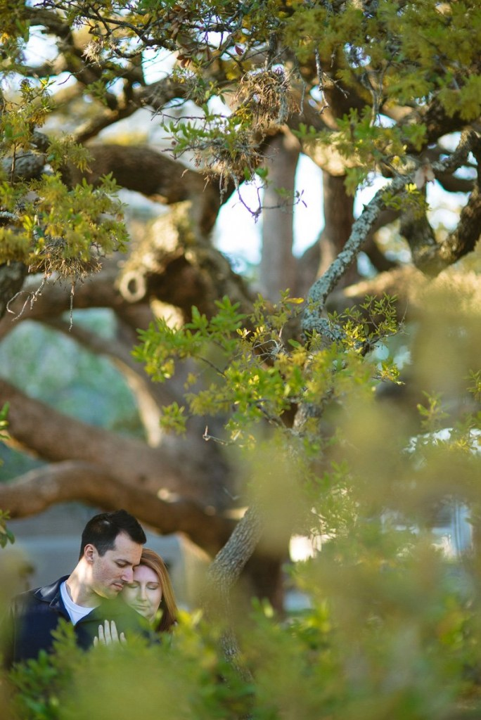 Texas A&M century tree engagement pictures