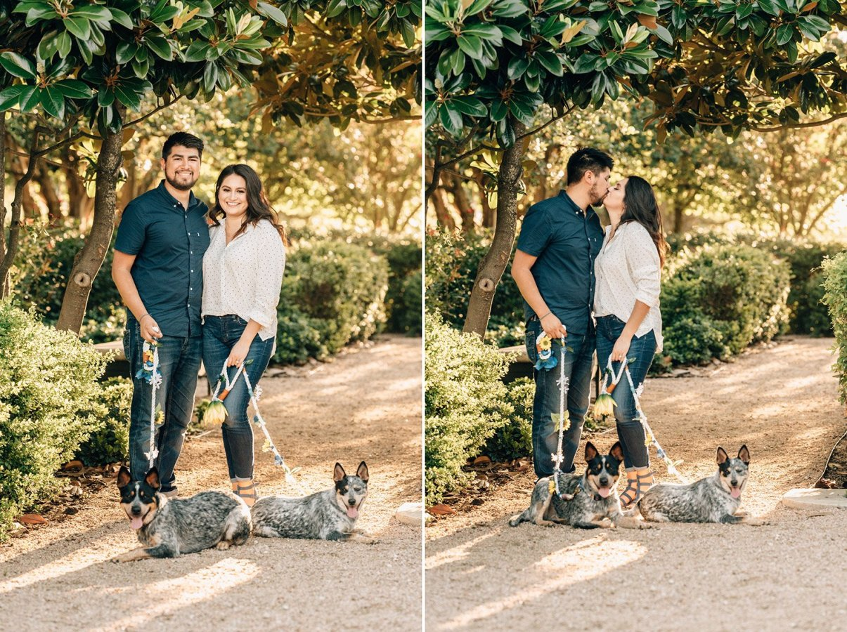 engaged couple with their dogs