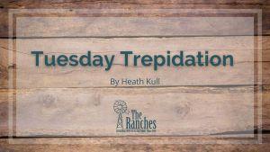 Tuesday Trepidation