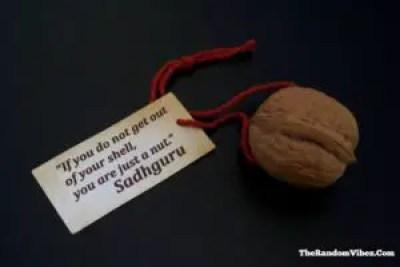 Sadhguru Success Quotes