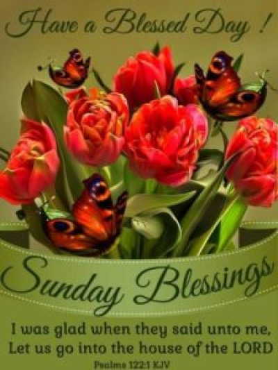 Have Blessed Sunday