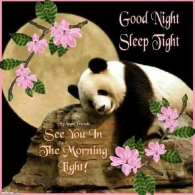 Good Night Images Cute