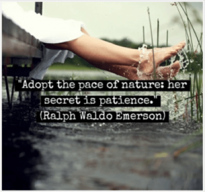 Ralph Waldo Quotes about Nature