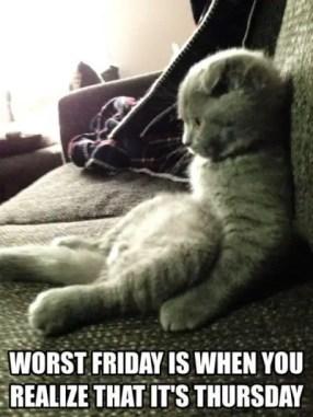 Worst Thursday Meme