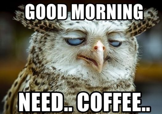 80 Good Morning Coffee Memes & Images to Kick Start Your Day