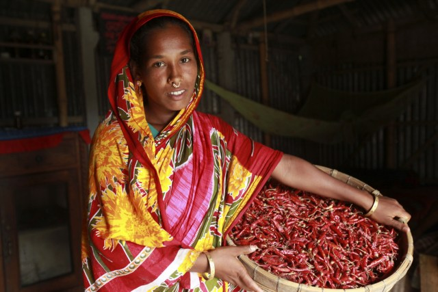 Joygun Islam is a member of the chilli producer group, and has been receiving training from Oxfam on growing and selling chillies. Since training she has noticed a big change and has more confidence and self belief. She is proud of her bright red chillies. For her, they signify a huge change in her life over the last three years. âSince weâve been growing chillies weâve been suffering less during the flood,â She says. âWe sell them and we can save money- that money I can use to spend on food and clothes for my children, and also on school for my daughterâ.