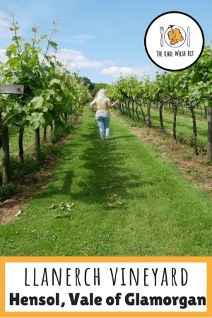 Llanerch Vineyard in Hensol, Vale of Glamorgan is the perfect setting for a wedding, or just a romantic getaway or intimate dinner! Read more about my stay. #llanerchvineyard #hensol #valeofglamorgan #vineyard #vines
