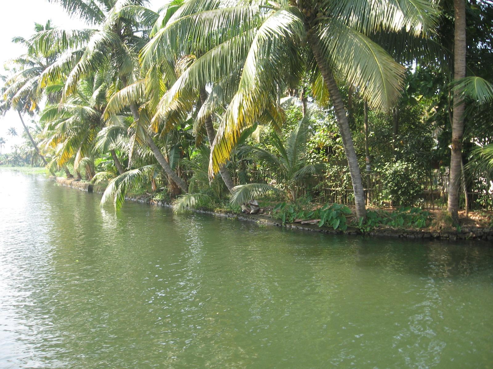 Kerala Backwaters - Places to Visit in Kerala