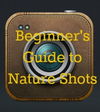 beginner's guide to nature shots