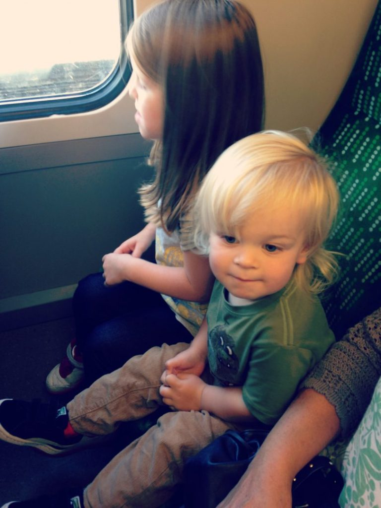 The Train journey