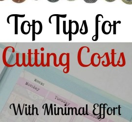 Top Tips for Cutting Costs with Minimal Effort: The lazy guide to saving money on everyday things around the home, from planning to growing your own, all done as easily as possible.