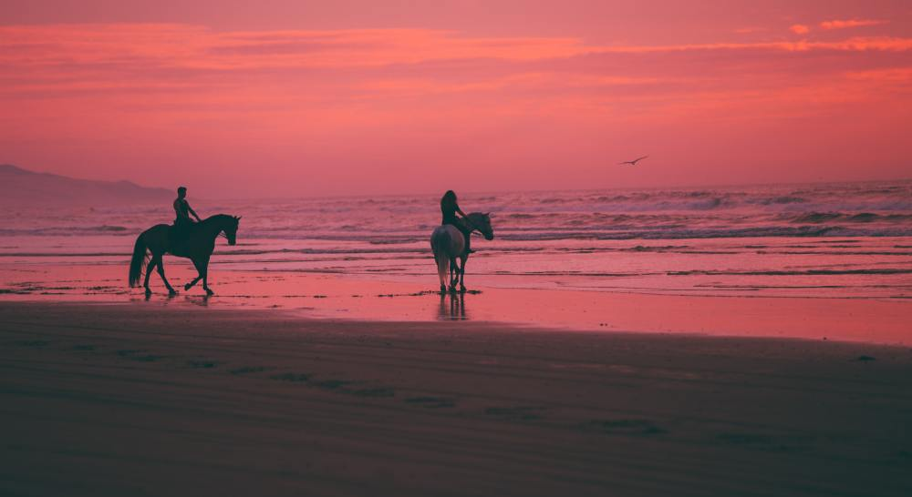 an adventure seeking couple on horseback on a sunset lit beach
