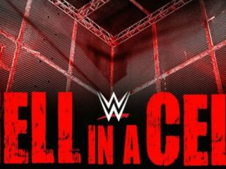 Preview and Predictions WWE Hell In A Cell 1082017