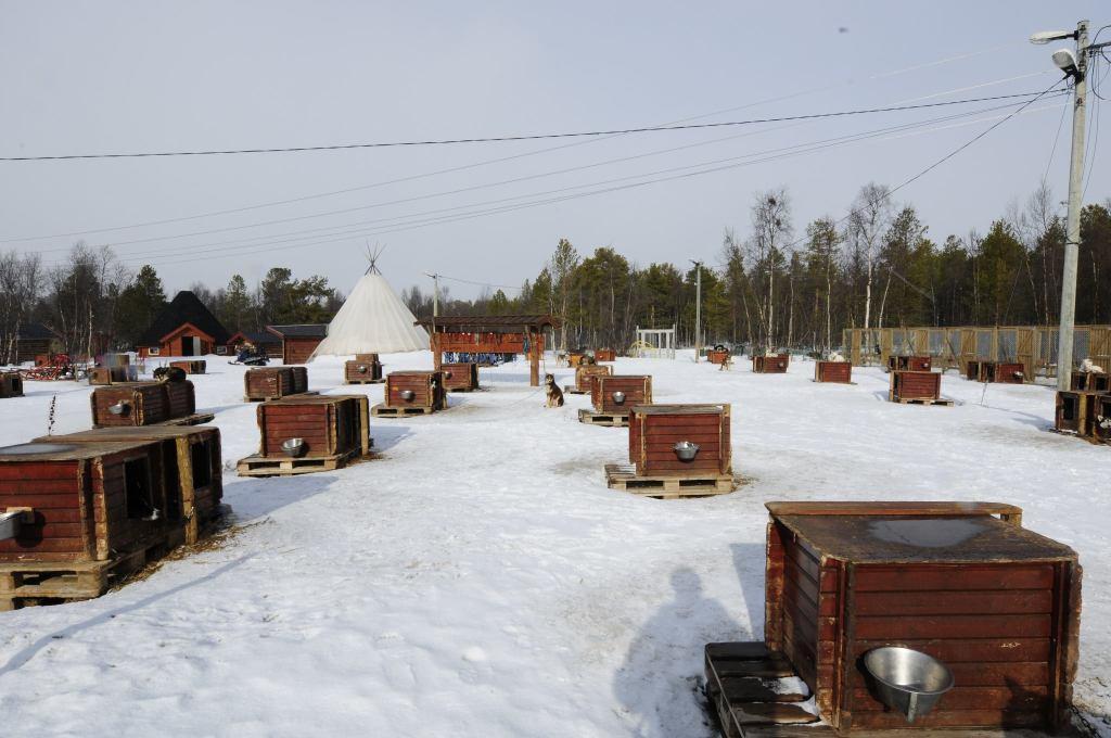 huskie village