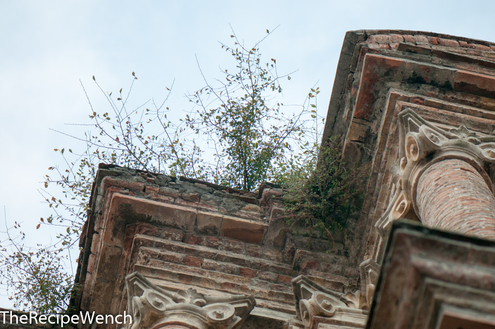 Roof with foliage in Penne