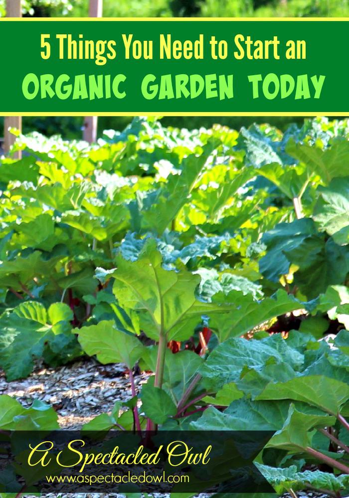 OrganicGarden