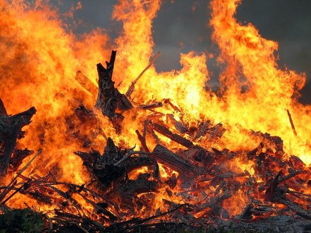flames in a bonfire